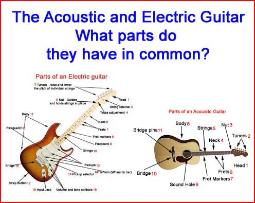 Parts-of-an-acoustic-and-electric-guitar
