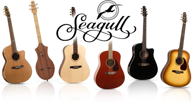 Seagull-acoustic-guitar